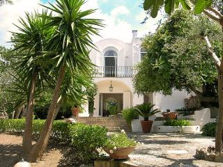 Charming Villa with Internet Access and A/C - Anacapri vacation rentals