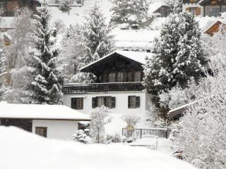 Nice Chalet with Internet Access and Central Heating - Nendaz vacation rentals