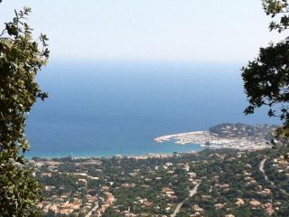 villa cavalaire sur mer - Cavalaire-Sur-Mer vacation rentals