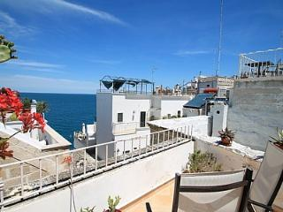 Nice House with Deck and Internet Access - Polignano a Mare vacation rentals