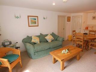 Nice 2 bedroom Apartment in Modbury - Modbury vacation rentals
