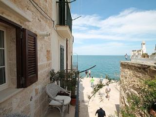Cozy Polignano a Mare vacation House with Deck - Polignano a Mare vacation rentals
