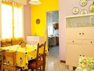ampio appartamento luminoso - Modena vacation rentals