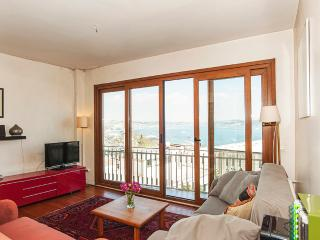 Very charming flat in Cihangir with view at the Bosphorus - Istanbul vacation rentals