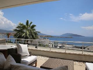 252- 4 Bed Luxury Villa Gumbet - Gumbet vacation rentals