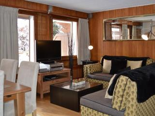 Nice Condo with Internet Access and Television - Verbier vacation rentals