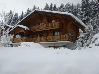 Spacious Chalet with Internet Access and Satellite Or Cable TV - Bernex vacation rentals