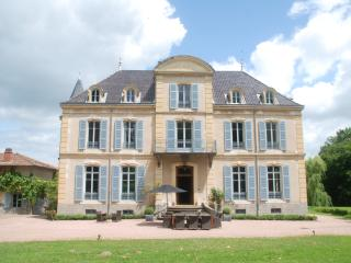 Lovely 6 bedroom Villa in Roanne - Roanne vacation rentals