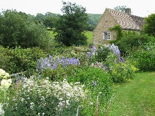 Comfortable 1 bedroom Cottage in Wotton-under-Edge - Wotton-under-Edge vacation rentals