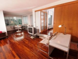Villa Fortuny-Fonatine 4people - Rome vacation rentals