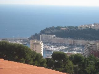 2 bedroom Apartment with Internet Access in Beausoleil - Beausoleil vacation rentals
