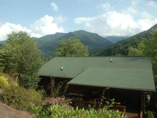 SKIING MINUTES AWAY NO 4 WD  $150.00 3 B/B SUITES - Maggie Valley vacation rentals