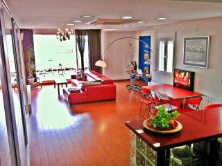 design loft+wifi+sunny terrace - Valencia vacation rentals