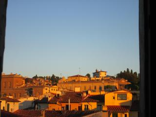 Attico with fantastic view on monuments - Florence vacation rentals