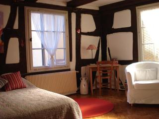 Nice Condo with Washing Machine and Television - Colmar vacation rentals