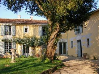 Domaine de Bourgville - Monts-sur-Guesnes vacation rentals