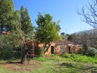 Cozy 2 bedroom House in Garafia with Television - Garafia vacation rentals