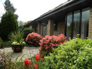 Beautiful House with Internet Access and Cleaning Service - Carrickfergus vacation rentals