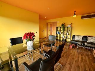 Nice 2 bedroom Pineda de Mar Apartment with Internet Access - Pineda de Mar vacation rentals