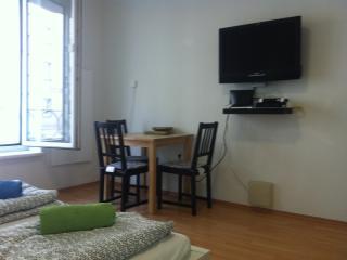Bright 1 bedroom Condo in Vienna - Vienna vacation rentals