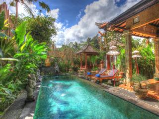 Merta House Jasan Village Ubud - Ubud vacation rentals
