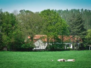 Charming Guest house with Internet Access and Satellite Or Cable TV - Holsbeek vacation rentals