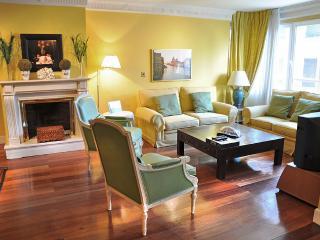 Gran Castellana Lux, Central - Madrid vacation rentals