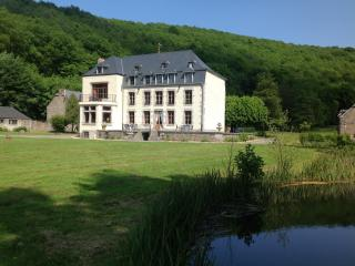 Bright 7 bedroom Castle in Vireux-Wallerand with Internet Access - Vireux-Wallerand vacation rentals