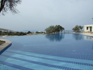 D2 Aegean Hills - Yalikavak vacation rentals