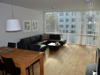 Luxury 2 room apartment in the center of Reykjavik - Husafell vacation rentals