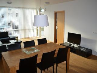 Luxury 2 room apartment in the center of Reykjavik - Reykjavik vacation rentals