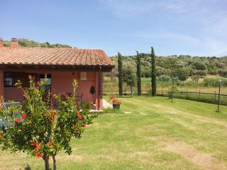 1 bedroom Farmhouse Barn with Short Breaks Allowed in Grosseto - Grosseto vacation rentals