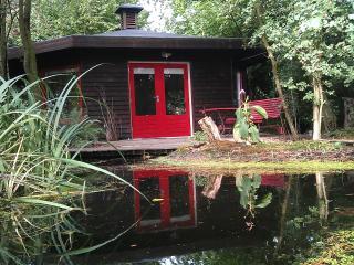 Forest house in center holland - Leusden-Zuid vacation rentals