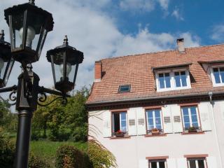 Romantic 1 bedroom Gite in Bas-Rhin with Internet Access - Bas-Rhin vacation rentals
