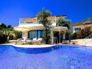 Villa Phoebe - Kalkan vacation rentals