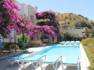 Cozy Condo with Internet Access and A/C - Gumusluk vacation rentals