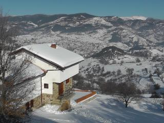 Beautiful Mountain Chalet - Pamporovo vacation rentals