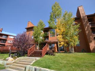 Keystone 2BR overlooking wetlands and ski slopes - Keystone vacation rentals