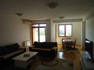 Nice 2 bedroom Condo in Skopje - Skopje vacation rentals