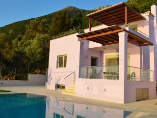 Beautiful Villa with Internet Access and Dishwasher - Nikiana vacation rentals
