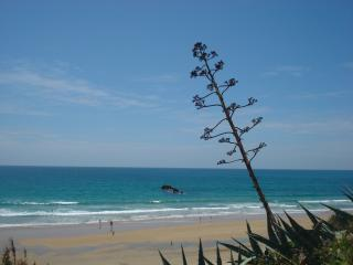 Lovely Condo with Internet Access and Satellite Or Cable TV - Conil de la Frontera vacation rentals