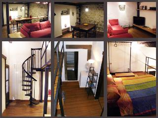 Cozy Florence apartment, sleeps three, wifi access - Florence vacation rentals