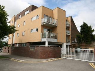 Heath Park - Hemel Hempstead vacation rentals