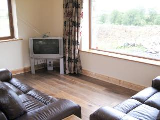 Nice House with Central Heating and Kettle - Riverstown vacation rentals
