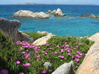 In Sardinia on a dream island - La Maddalena vacation rentals