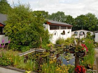 Bellas Cottage - Holsworthy vacation rentals