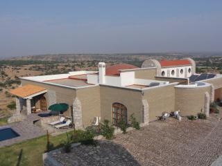 Casa el Cactus - San Miguel de Allende vacation rentals