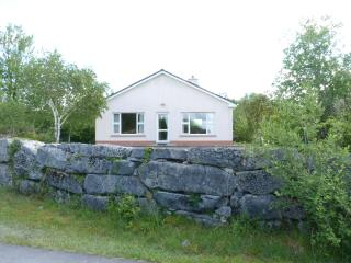 Lakeshore House - Ballinrobe vacation rentals