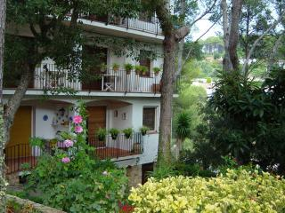 Tamariu - Lovely apartment in a small cove - Tamariu vacation rentals