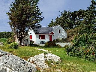 Cozy 2 bedroom Cottage in Clifden - Clifden vacation rentals
